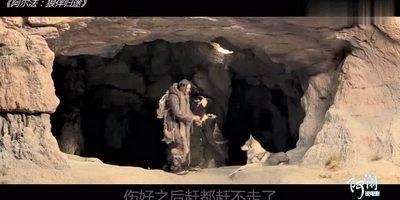 大难不死必有后福,小伙救下一只荒原狼王,成功走上人生巅峰