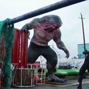 当鲨鱼辣椒长大之后,就连闪电侠都不是他的对手
