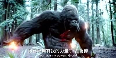 《闪电侠》与大猩猩古鲁德结合,变身闪电大猩猩!