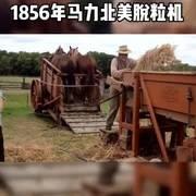 1856年,美国明尼苏达州农场使用的马力脱粒机!